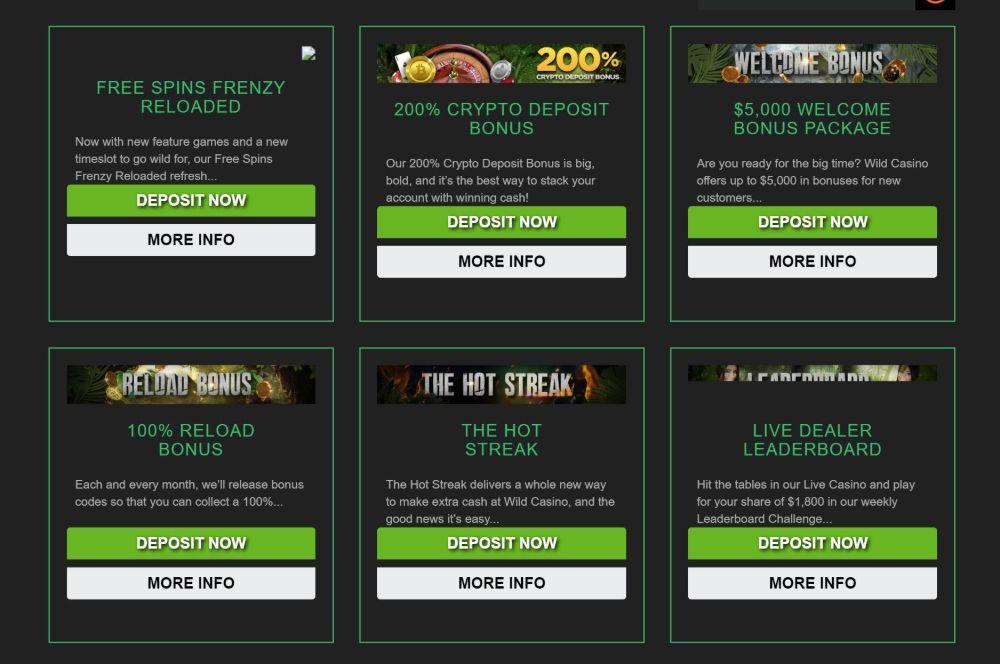 wild casino bonus